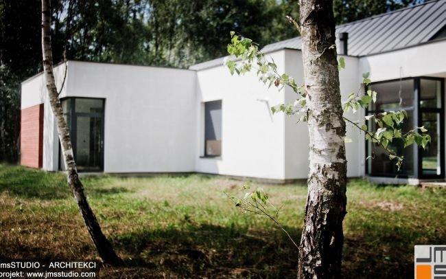 Nowoczesny projekt domu jednorodzinnego z efektownymi dużymi przeszkleniami drewnem na elewacji i dachem z blachy na rąbek pod Brzeskiem - projekt indywidualny